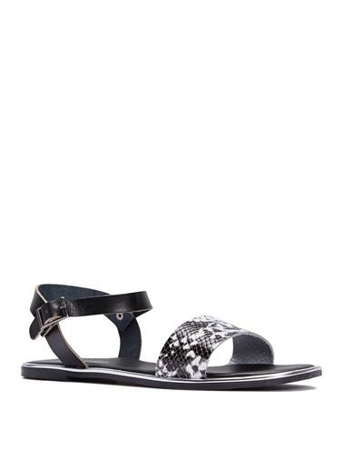 Sole Sisters Düz Sandalet Siyah - Jessore Siyah